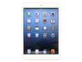 ƻ��iPad mini��16GB/Cellular��