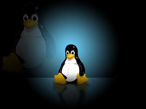 服务器正文linustorvalds日前正式宣布了linux3.