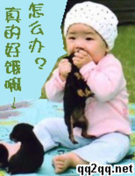 【图】qq表情:饿了,吃饭图片欣赏表情包动态兔图片
