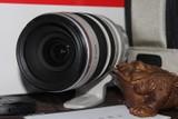 佳能EF 28-300mm f/3.5-5.6L IS USM实拍图