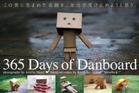 遇見呆萌Danboard 酷殼奇幻之旅賞析