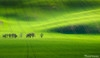 领略自然奇观 精彩风光摄影作品赏析