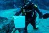 新加坡SEA海洋馆的潜水员