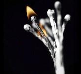火柴燃烧后的创意重生:将世界的美尽收眼底