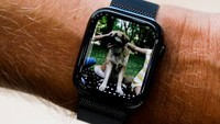 屏幕增大30% Apple Watch Series 4上手图