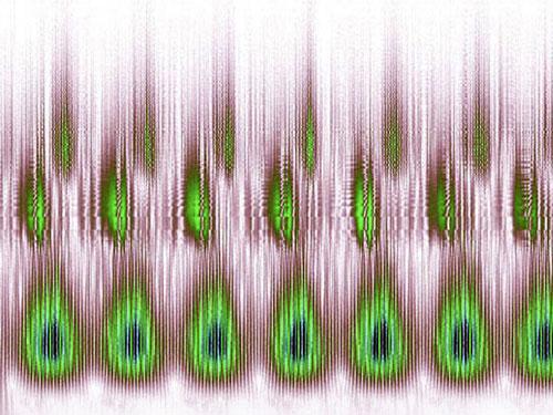 海豚鲸类完美声谱图案