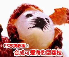 Photoshop大搞怪:合成可爱海豹型荔枝