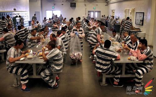 图记美国帐篷监狱生活