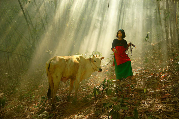 捕捉炫彩光影 印尼摄影师经典作品欣赏