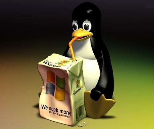 看五大Linux歌词插件如何火拼Windows_服务器