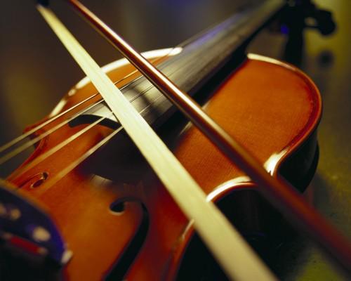 古典音乐入门 交响乐乐器简介之弦乐篇