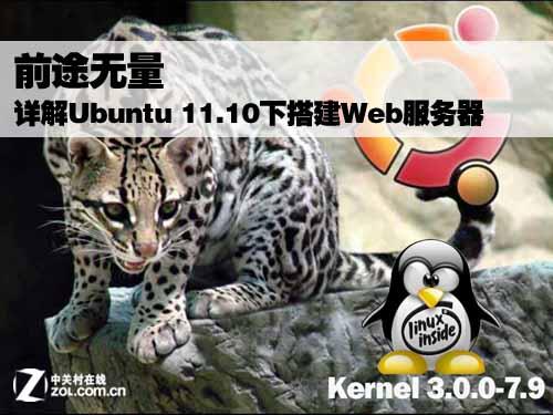 Ubuntu 11.0下搭建Web服务器