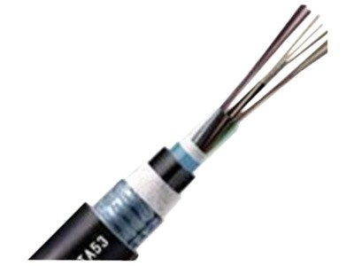 大唐保镖 24芯多模万兆室外光缆(GYTA53-OM3-24A1A)