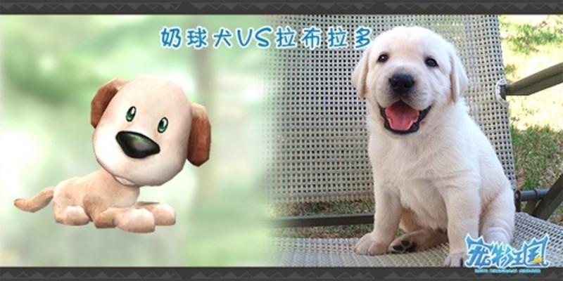 zol首页 新闻中心 游戏频道 网络游戏 《宠物王国》可爱风暴 超萌宠物