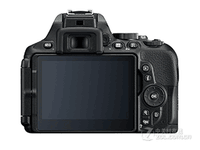 Nikon/尼康D5600 单机 2416万有效像素 不含镜头 入门  天猫3390元