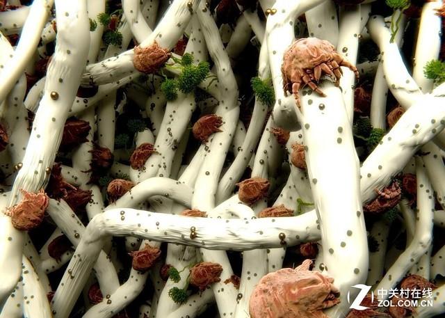 一周皮屑居然可以养活200万螨虫 怎么破?