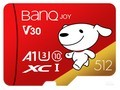 BanQ U1 Pro(512GB )