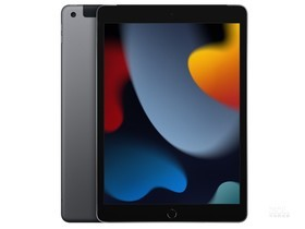 苹果iPad 2021(256GB/蜂窝网络版)
