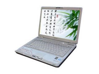 东芝M300